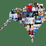 mozaika-ptak-kiwi-przezroczysteTlo