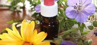 Homeopatia – czy to działa?